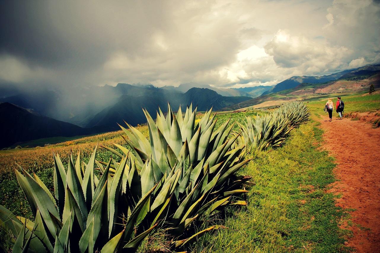 Geheimtipp – Regenzeit in Peru!