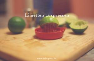 limetten_limones_peru_pisco_sour_cokctail_nationalgetränk_peru