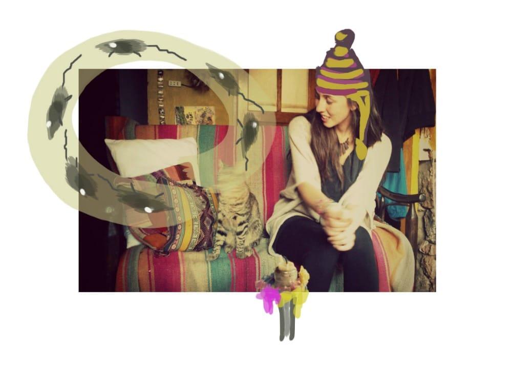 mojito_katze_cusco_zuhause_auswandern_nach_peru_haus_design