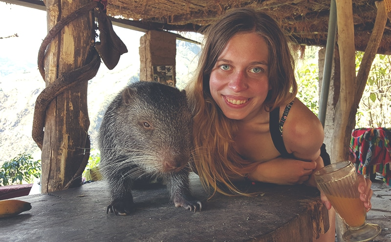 inca_jungle_inka_trail_abenteuer_peru_trekking_nach_machu_picchu_wanderung_cusco_anden_tour_regenwald_dschungel