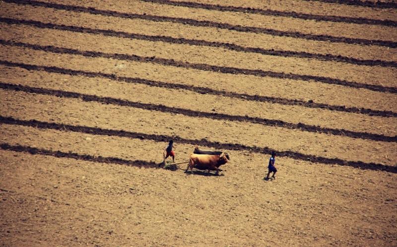 ollantaytambo_reisen_peru_heilige_tal_tour_inka_ruine_machu_picchu_steine_urubamba_berge_anden_landwirtschaft