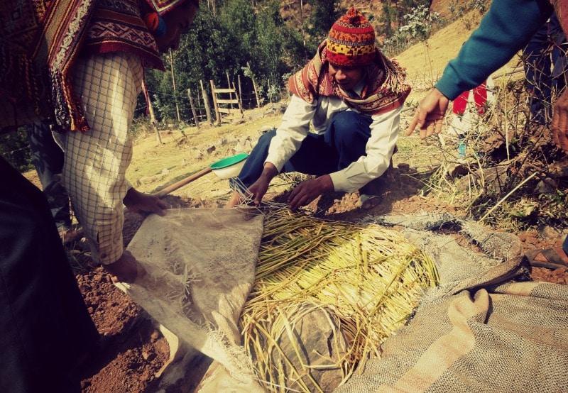 sozialprojekt_kommunaler_tourismus_andenhochland_peru_quechua_indianer_textilien_schafswolle_pachamancha_kartoffeln_essen_tradition