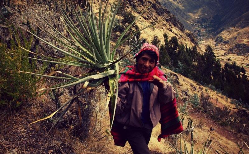 sozialprojekt_kommunaler_tourismus_andenhochland_peru_quechua_indianer_textilien_schafswolle_pfalnze_tal