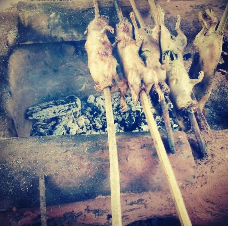 tipon_cuy_meerschwein_essen_in_peru_rundreise_speisen_kulinarik_gastronomie_cusco