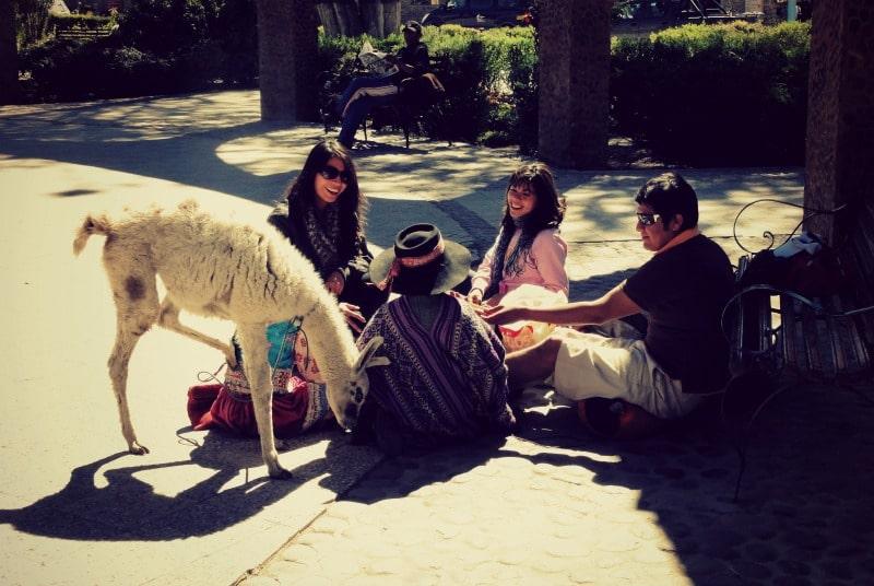 tour_colca_canyon_arequipa_vulkanstadt_hoher_pass_altiplano_peru_tal_chivay_berge_anden_lama