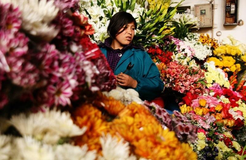 Fotografieren_in_peru_fotografie_kamera_reisen_fotoreisen_tour_cusco_markt_san_pedro