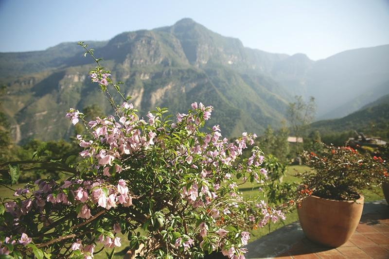 Gocta_Lodge_Unterkunft_Blumen_Peru_200