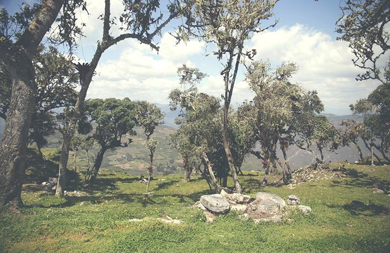chachapoyas_kuelap_nordperu_peru_norden_reisen_tour_landschaft_ruinen_präinka_natur_wald_200