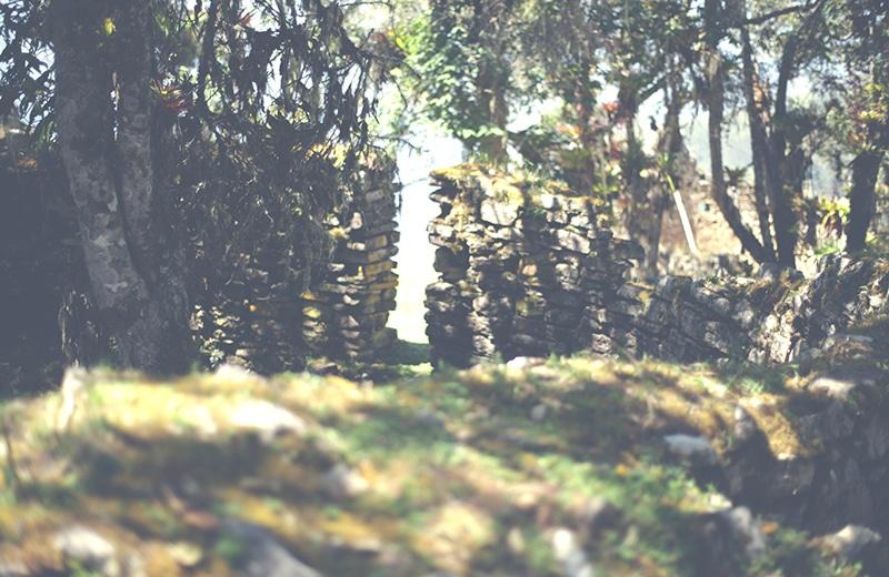 chachapoyas_kuelap_nordperu_peru_norden_reisen_tour_landschaft_ruinen_präinka_natur_mauer_200