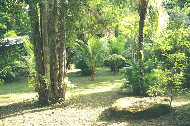 Tarapoto_lodge_los_huingos_unterkunft_peru_norden_regenwald