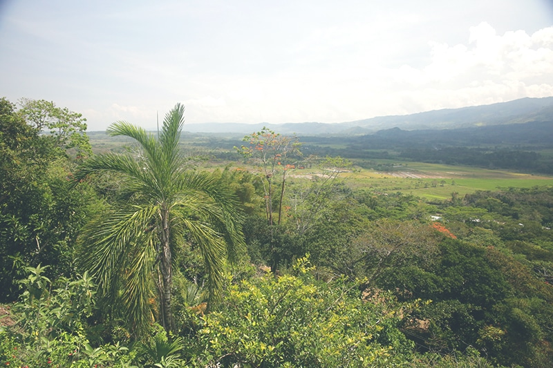 moyobamba_mirador_peru_norden_reise_regenwald_200