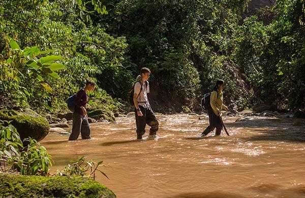 Conservation-Projekt-Amazonas-Regenwald