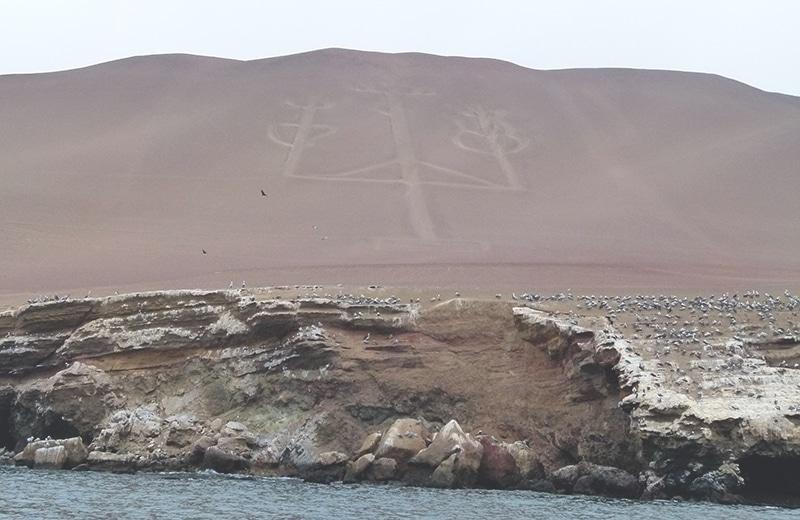 nationalpark_paracas_peru_küste_inseln_islas_ballestas_touren_bus_wüstenzeichnung_candelaria