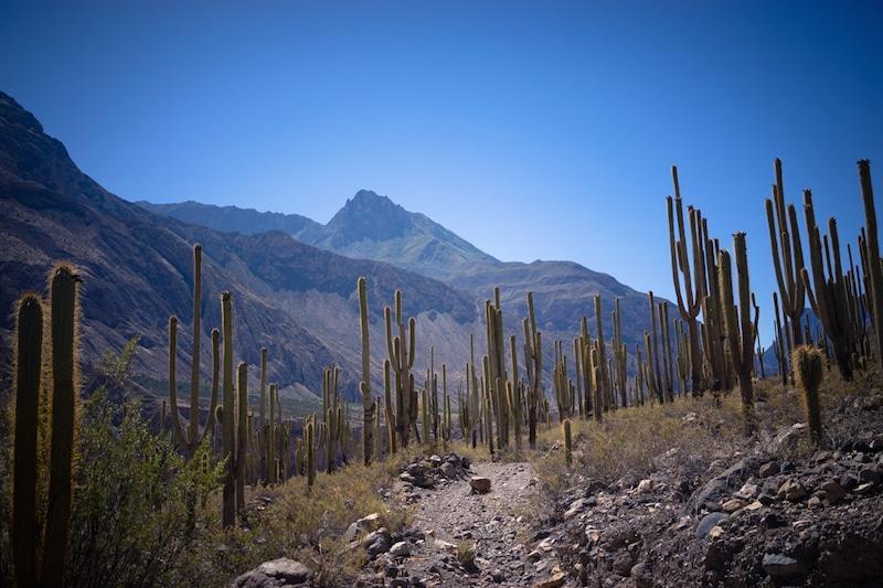 cotahuasi_colca_cañon_arequipa_mietwagen_landschaft_mit_mietauto_durch_peru_reisen