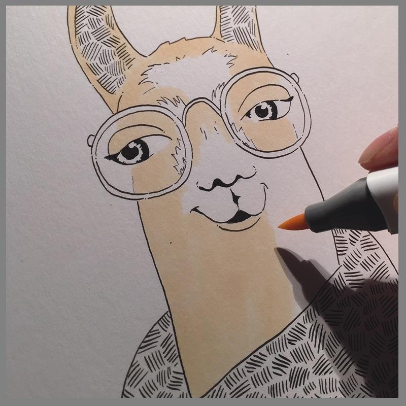 lama_illustration_peru_NL