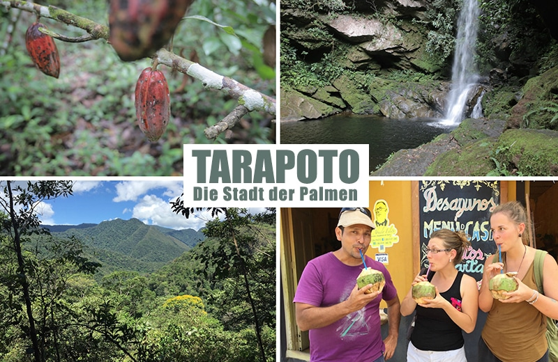 tarapoto_norden_peru_reise_lodge_regenwald_touren_san_martin_peru