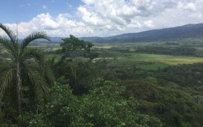 mirador_moyobamba_peru_rundreise_nordperu_san_martin_touren