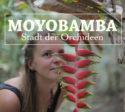 moyobamba_peru_touren_rundreise_nordperu