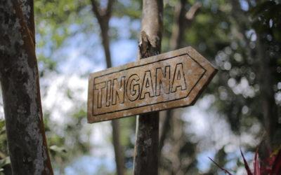 tinga_reserva_moyobamba_peru_rundreise_nordperu_san_martin_touren