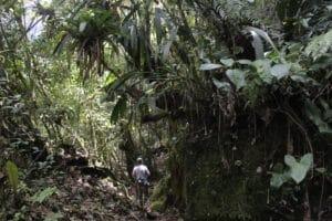 trekking_yumbilla_wasserfall_chachapoyas_peru_cuispes_wanderung_pedro_ruiz_nordperu