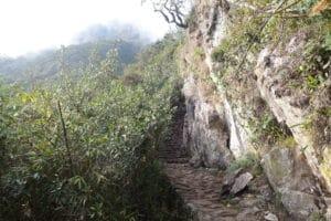 weg_montan%cc%83a_machu_picchu_hausberg_mountain_huayna_picchu_aufstieg_eintritt