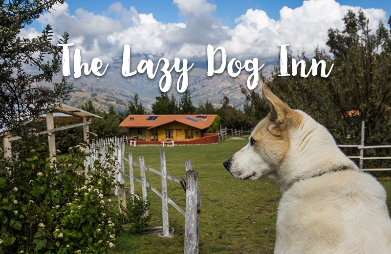 "Mein Tipp für Huaraz: Bed & Breakfast ""The Lazy Dog Inn"""