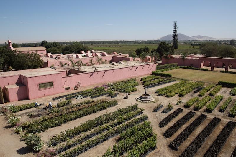 Das Weingut Tacama bei Ica