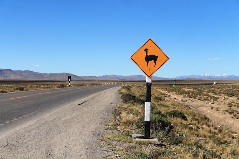 Verkehrsschild mit Vicuña