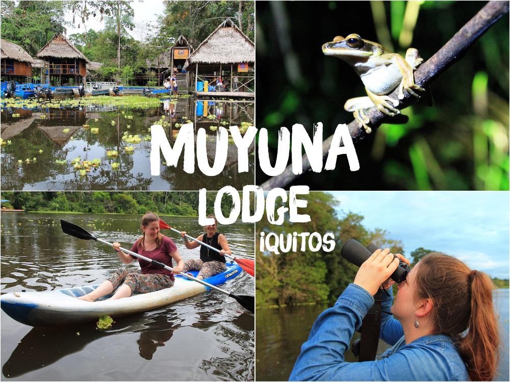 Amazonas Reise: Die Muyuna-Lodge bei Iquitos