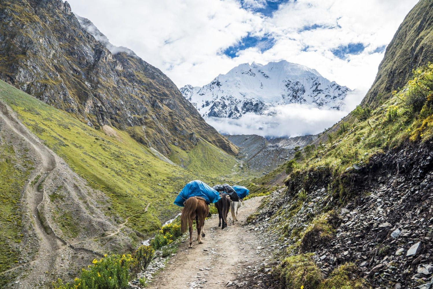 Wanderung nach Machu Picchu