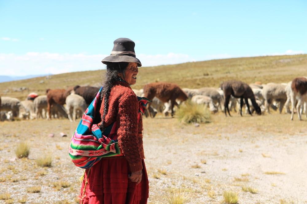 Peru Anden